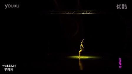 第五届中国钢管舞秀国家队钢管舞大赛决赛大龄组董爱春表演