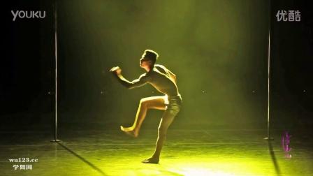 2016第六届中国钢管舞锦标赛男子组亚军王洋舞蹈表演