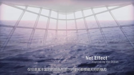 Net Effect_Short Vision