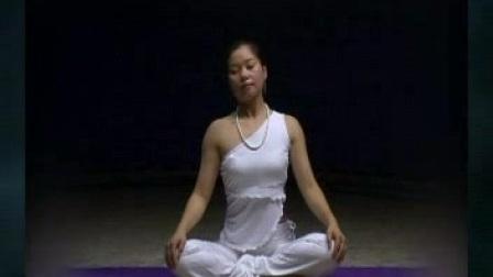 张君可 初级瑜伽经典教程