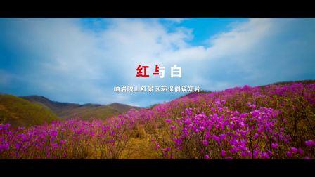 《红与白》岫岩映山红景区环保倡议短片 摄像:许殿栋 徐乐