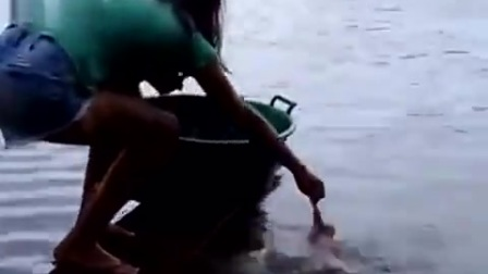 看看食人鱼,一准吓晕你