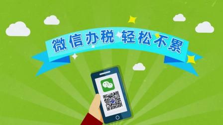 枫岚动漫系列《河源国地税公众号宣传片》