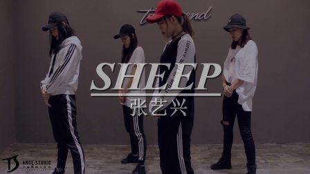 张艺兴《SHEEP》编舞教学练习室②【TS DANCE】