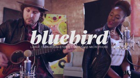 BLUE:Bluebird SL/蓝鸟SL 录音麦克风人声乐器拾音 产品展示