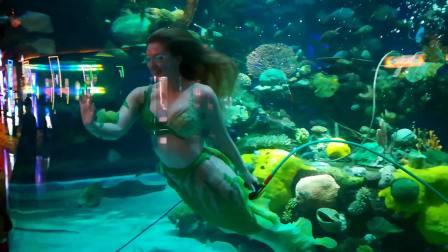 拉斯维加斯系列 - 西弗敦酒店美人鱼表演 (Mermaid's Show)
