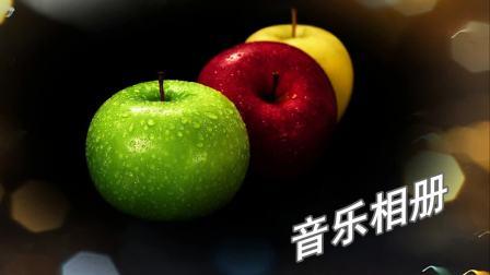 苹菓-自作音乐相册- 新娘花