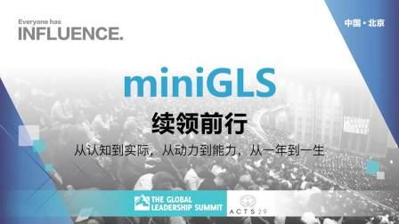 miniGLS new