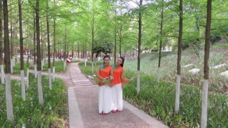 安江燕儿广场舞:妈妈您快留步(双胞胎飞燕姐妹演绎)附原创老师教学