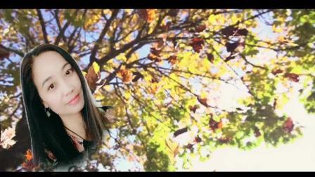 落叶的秋天 风语-KTV版