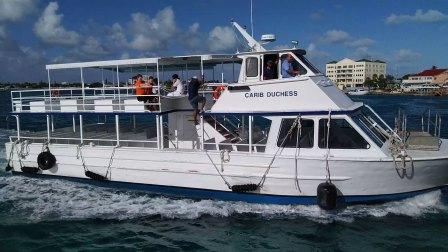 【快7岁】2-15哈哈开曼群岛海龟海豚游览结束,坐船回游轮VID_161216