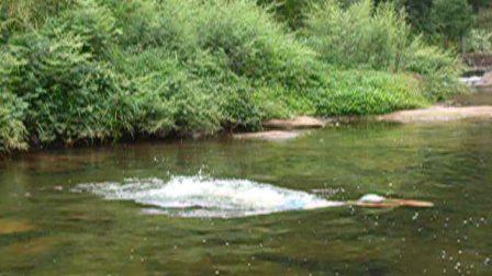 我的蛙泳视频