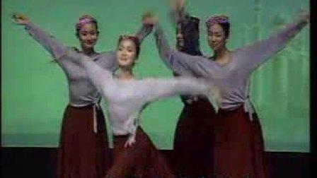 新疆舞蹈教学《组合》八,点探退蹉步组合