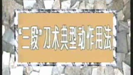 【中国武术段位制教材】长拳12