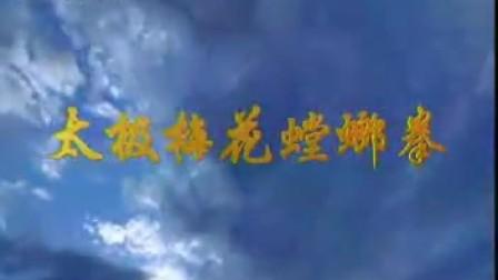 螳螂拳-太極梅花螳螂八步連環拳-張炳斗