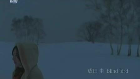 [PV]「Blind bird」成田 圭