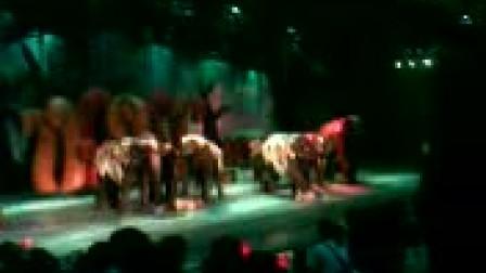 常州恐龙园泰象秀