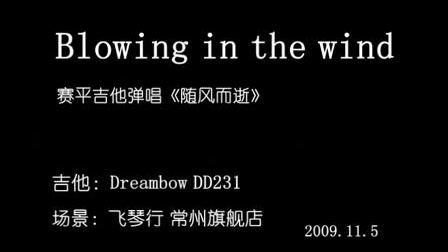 赛平吉他弹唱-随风而逝《blowing in the wind》