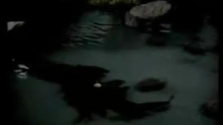 鸳梦重温(1942年)小片段 别让我离开你的视线 别离开我