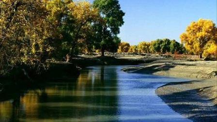 男高音独唱《塔里木河》