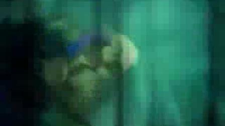 赭杉军终幕:紫霞碧血照丹心,赭杉血染吊尸壁