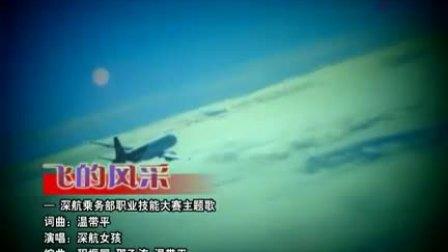 空姐《飞的风采》MV-深航女孩职业风采大赛主题歌