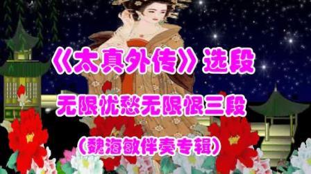 5.《太真外传》无限忧愁无限视频字幕