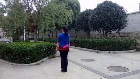 黄陂莺歌燕舞广场舞   拉萨夜雨  蝶舞仙子  背面习舞   自学(2018年11月15日)五