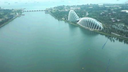 重游新加坡 植物園