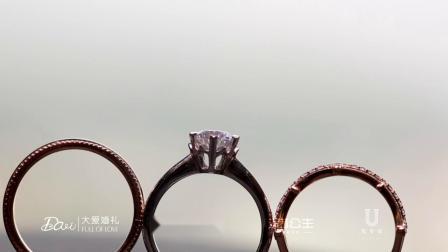 [佐罗印象】11.28 ZHENGRENJIA & TANKEER婚礼快剪
