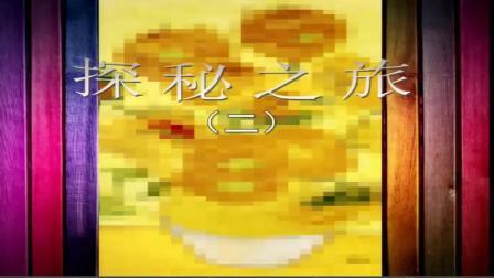 13.湘美版小学美术五年级下册《2.同一幅画》重庆市县级优课