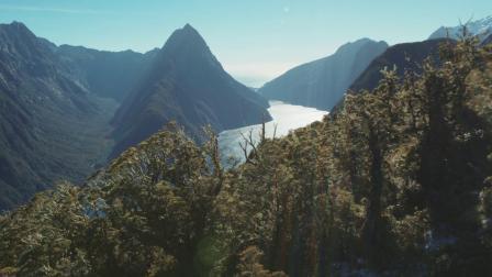 出发!世界第八大自然奇观—米福峡湾一日游