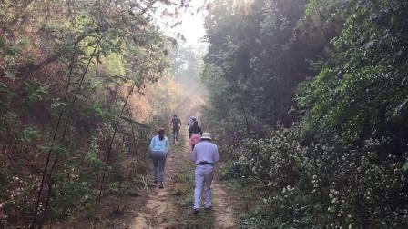 2019呼马山越野跑