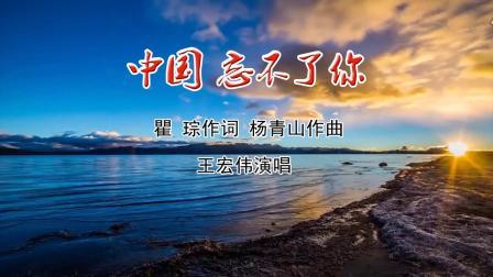 歌曲《中国忘不了你》LED