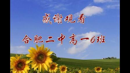 合肥二中第45届运动会嘉年华-高一六班
