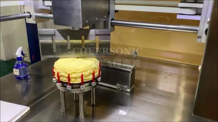 UFM5000 芒果千层蛋糕切割  - 杭州驰飞