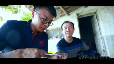 荆州家泰 值得信赖的水产饲料品牌