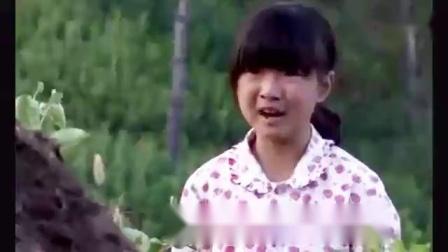 樱桃红:燕子思念亲人,在坟前无助痛哭,看着真揪心