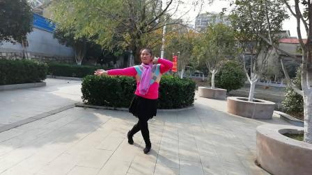 2  蝶舞仙子广场舞(桥边姑娘)正面习舞2019年12月25日(圣诞节)