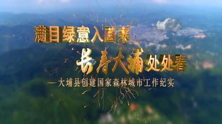 大埔县创建国家森林城市汇报宣传片