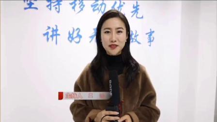 无为市电视台专访诗人书法家汪志先生