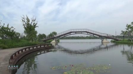 海宁.初夏鹃湖2020-05-20