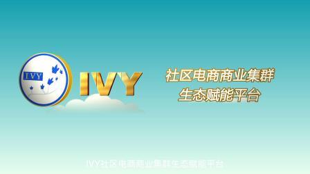 IVY平台宣传片.mov