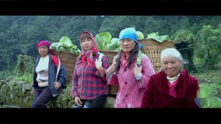 【色景传媒】元江之子——元江哈尼族彝族傣族自治县成立四十周年