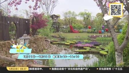 周末去哪玩:花艺绿植装点生活空间  家庭园艺展浦东开幕 上海早晨 170513