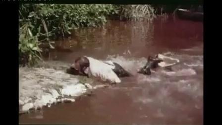 【牛男独家】太牛逼了!男子从多条鳄鱼背上快速过河