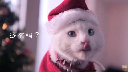 「厨娘物语」50MIMO酱的鸡肉圣诞树