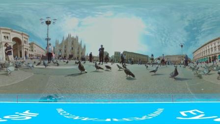 广场上的鸽子 14