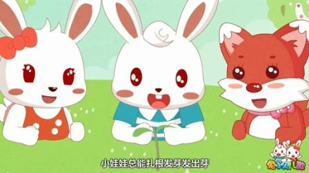 兔小贝系列儿歌  飞翔的蒲公英 (含)歌词