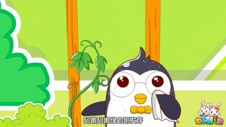 兔小贝系列儿歌  蜗牛与黄鹂鸟(含)歌词